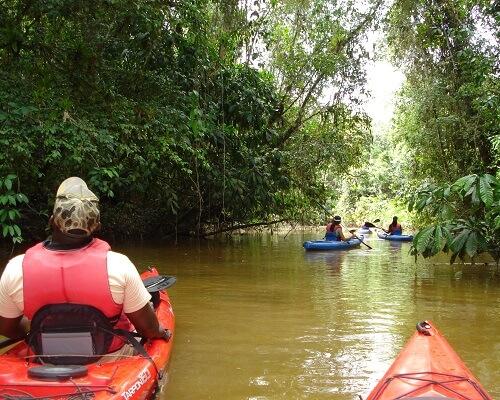 Avontuurlijke vakantie naar Suriname
