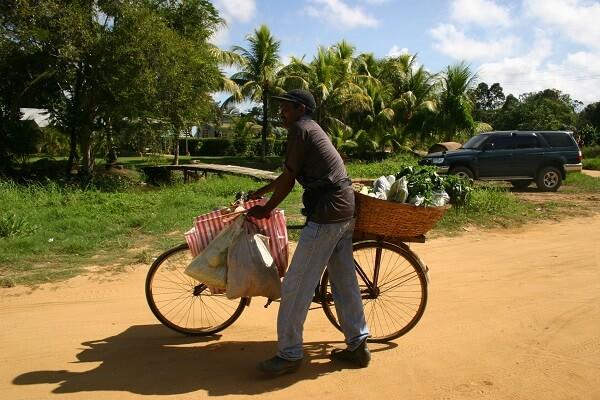 Fietstoer Suriname
