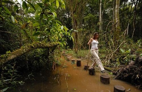 Jungle Trekking Suriname