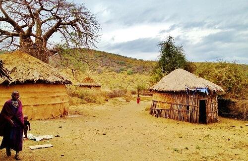Masai savanne