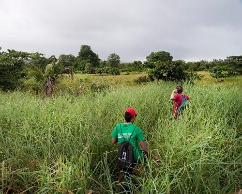Wandelreizen - Wandelen in Suriname